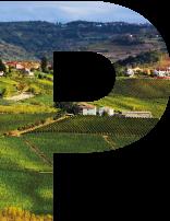 Visita il Monferrato
